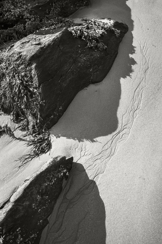 Sand Dollar Beach 01.jpg