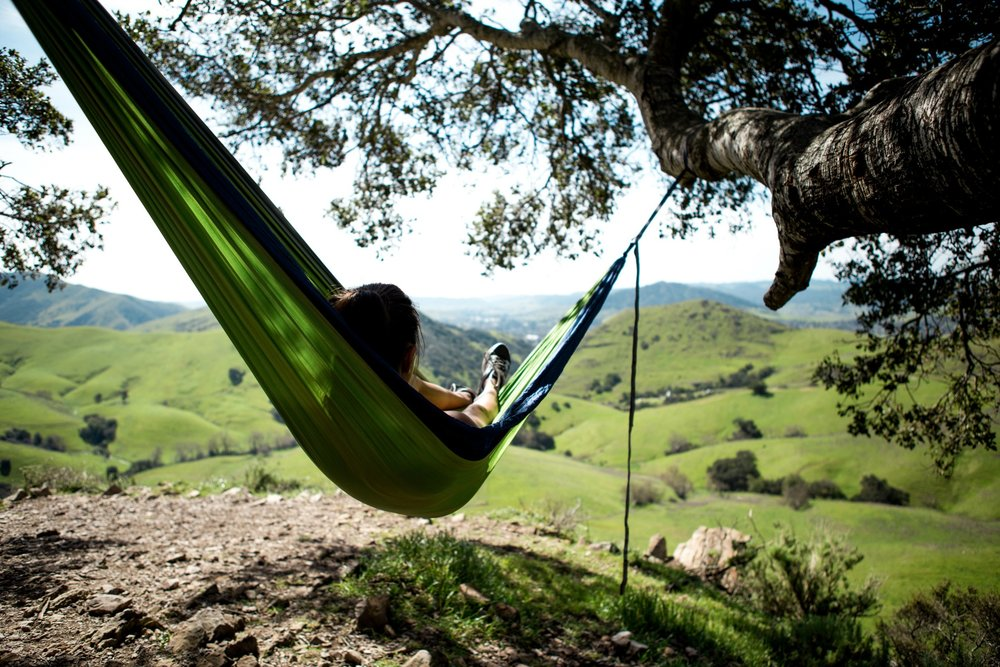 location-hammock-hills.jpg