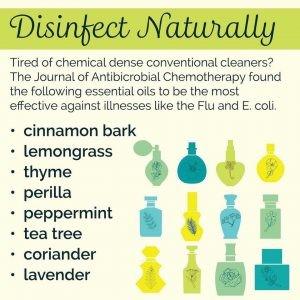 disinfect.jpg