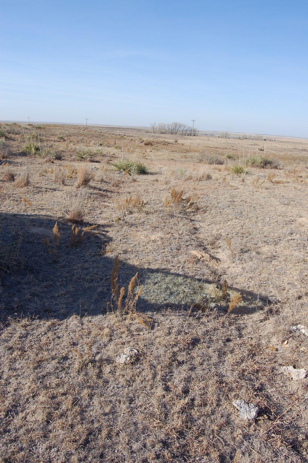 Wagon ruts still visible on the Nicodemus wagon trail.