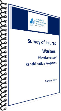 WSI-Rehab-Services-Report.png