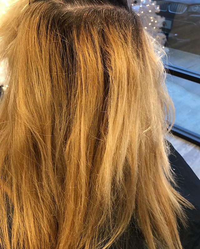 Holy transformation! Swipe for after! .. .. . #louisvillesalon #louisvillehastylist #hairstylists #hairofinstagram #hairinspo #louisvillehair #louisvillestylist #welovelou #louisvilleky #louisvillelove #louisvillelife #welovelouisville #explorelouisville #louisvillekentucky #keeplouisvillelocal #keeplouisvilleweird #headzsalon #colorproof #louisvillelife #goldwell #goldwellus #goldwellpurepigments #purepigments #platinumposse