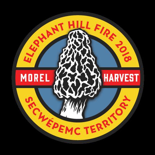 FstFds_ElephantHill_Morel.Harvest_01.png