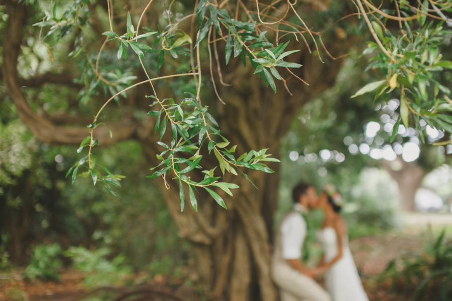 Olive Tree at Bailey House Museum Wedding Photography