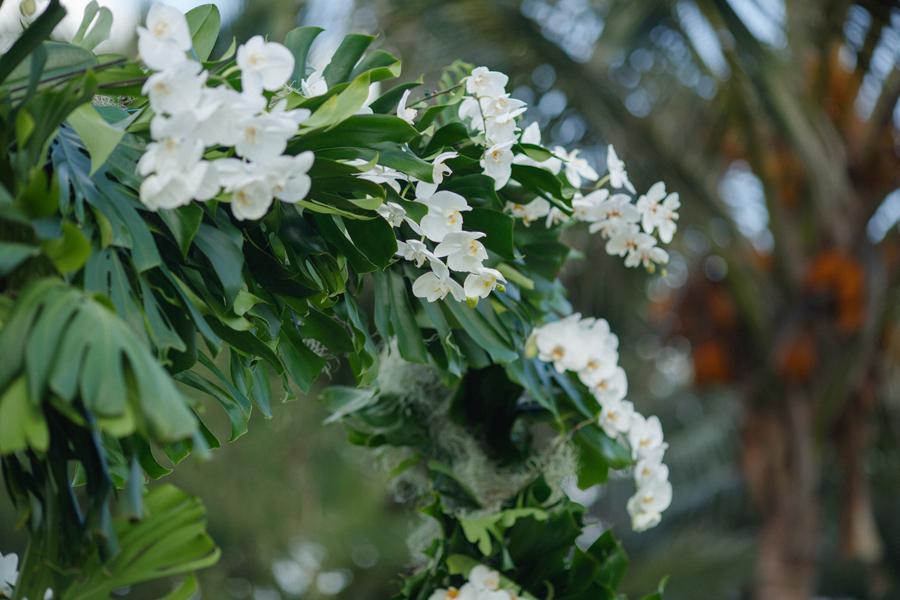 maui photographer orchids