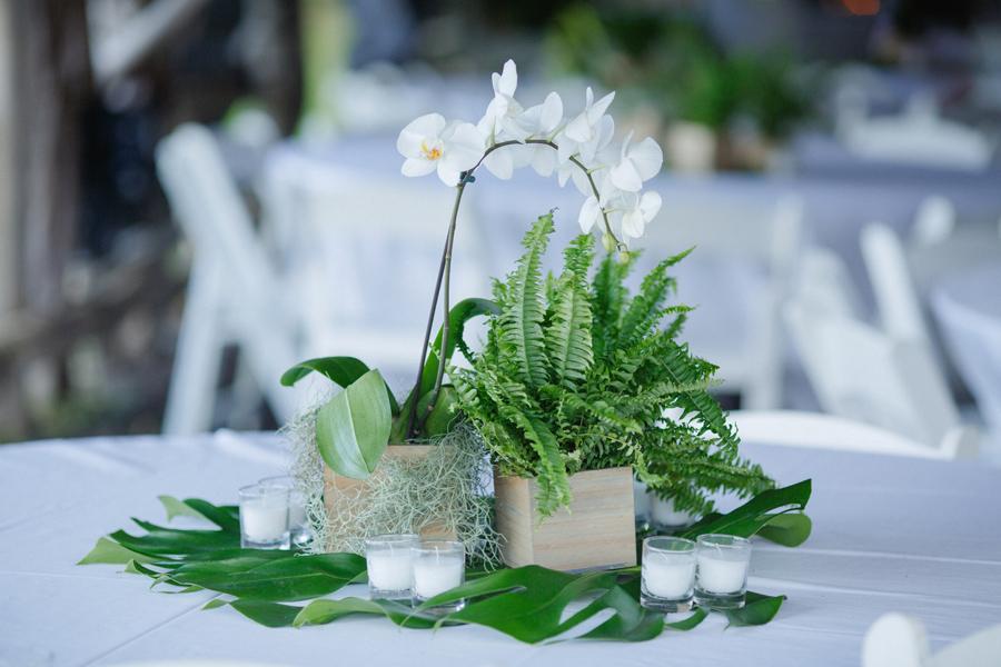 fern orchid wedding design