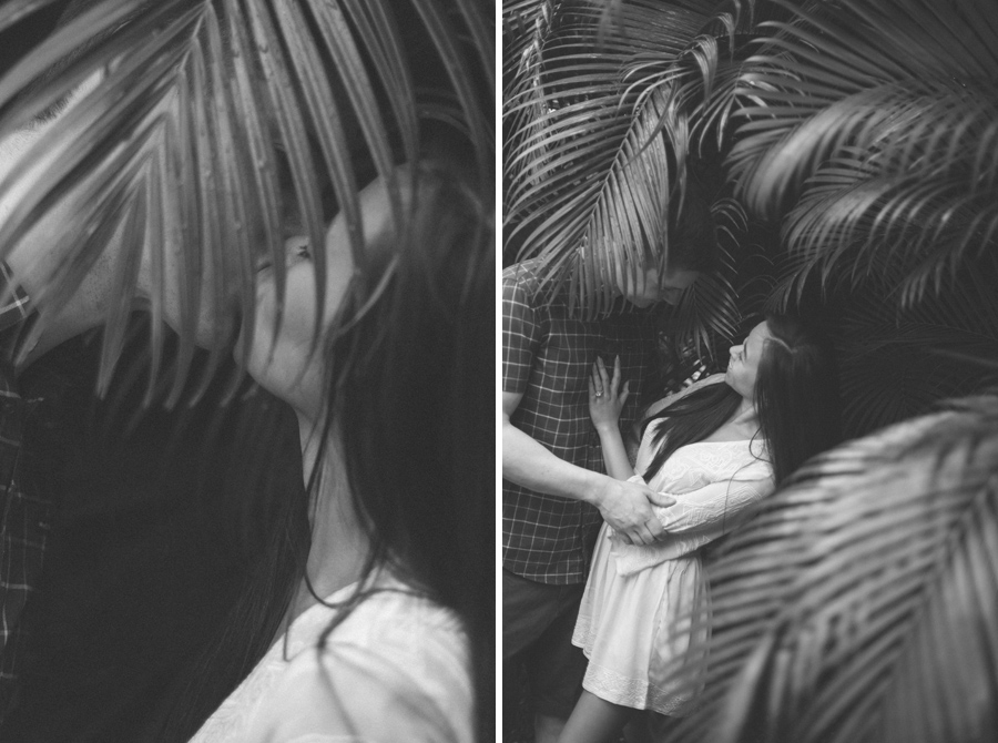 black and white palm tree photography