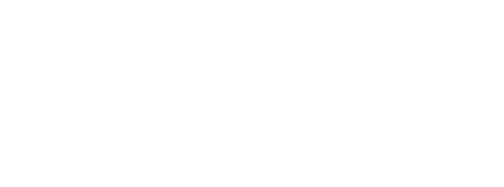 The-Salty-Whale-&-Guesthouse-Logo-FINAL---white1.png