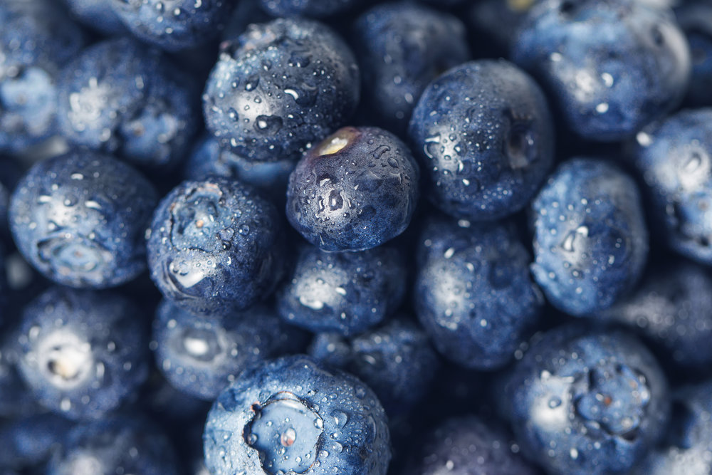 blueberry closeup.jpg