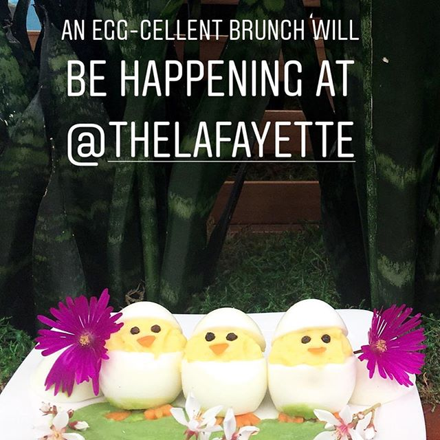 Chicks will dig it if you join us at @thelafayette for Easter Brunch! Take a peep at the menu on the Lafayette's website    http://lafayettehotelsd.com