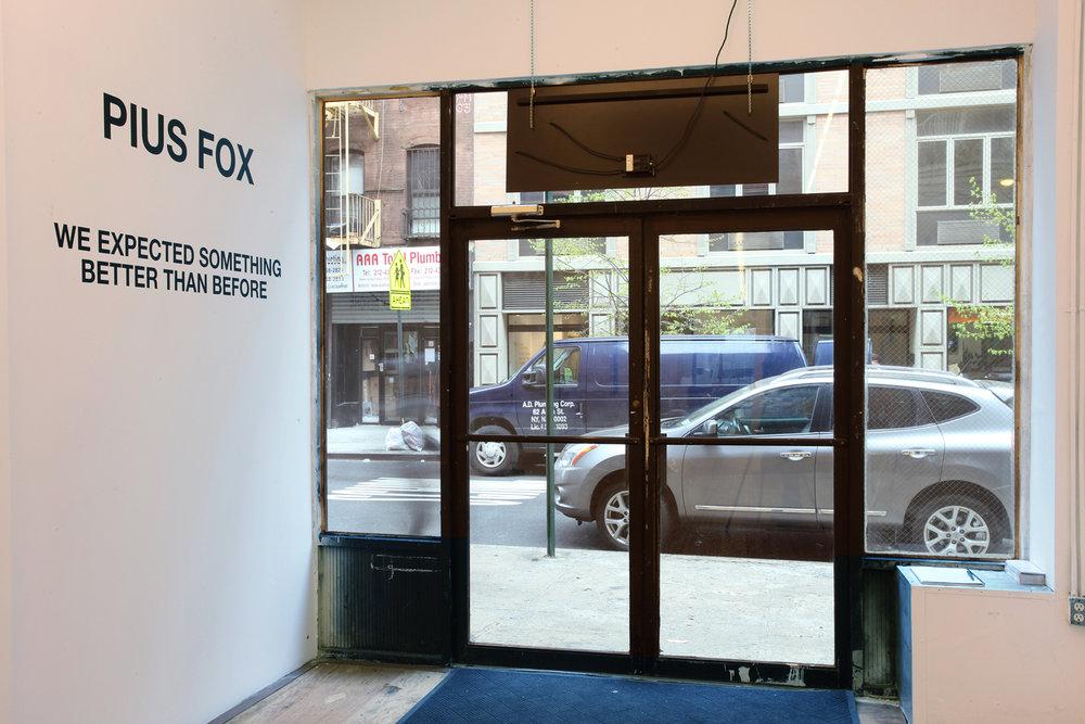 fox6.jpg