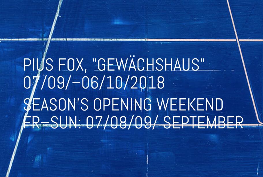 Pius Fox Solo Exhibition at Galerie Conrads, Dusseldorf.