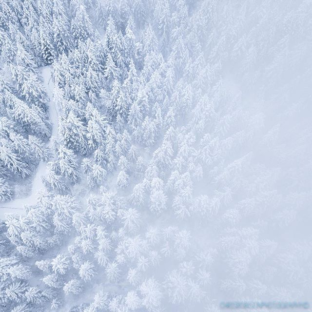 How about a drone shot of snow covered trees in the fog? We have gotten dumped on with this last series of storms on Mt. Hood, this last Sunday was no exception. Winter wonderland. #snowcoveredtrees #fog #winter #snow