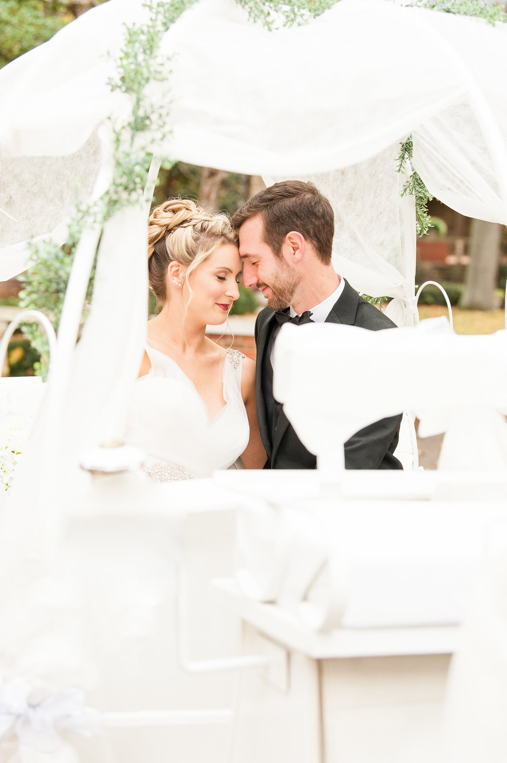 Cinderella Wedding theme  Photo:  Bret and Brandie Photography   Cinderella Carriage:  Rockn'B' Horse Carriage   HMU:  The Hair Traveler   Coordinating and Styling:  River Top Event Coordinating
