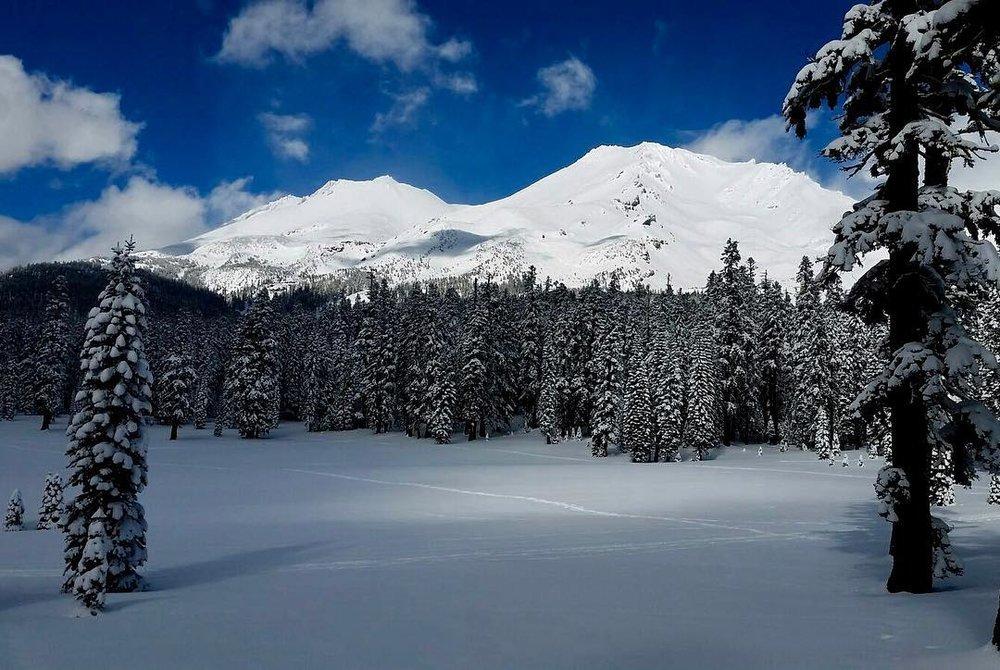 Mt. Shasta Vortex Tours Telos Portal