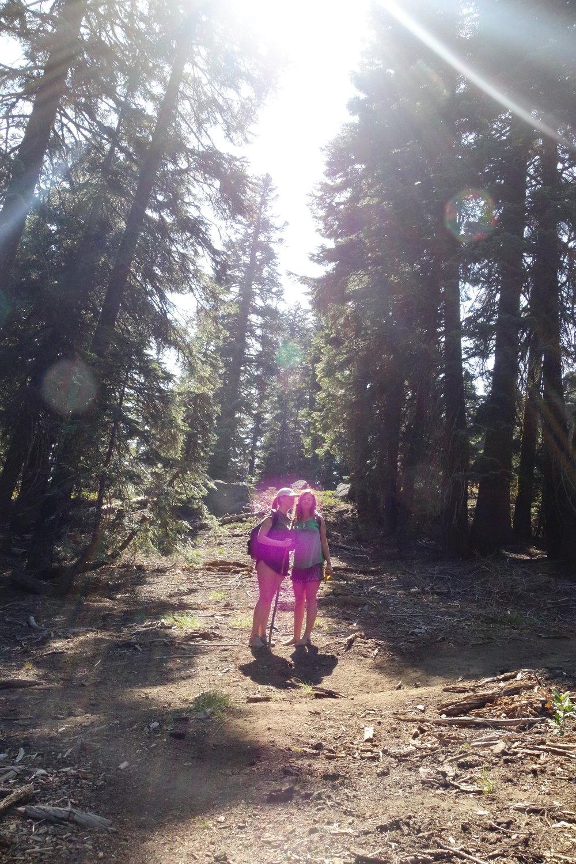 The Violet Flame - Mt. Shasta 2018