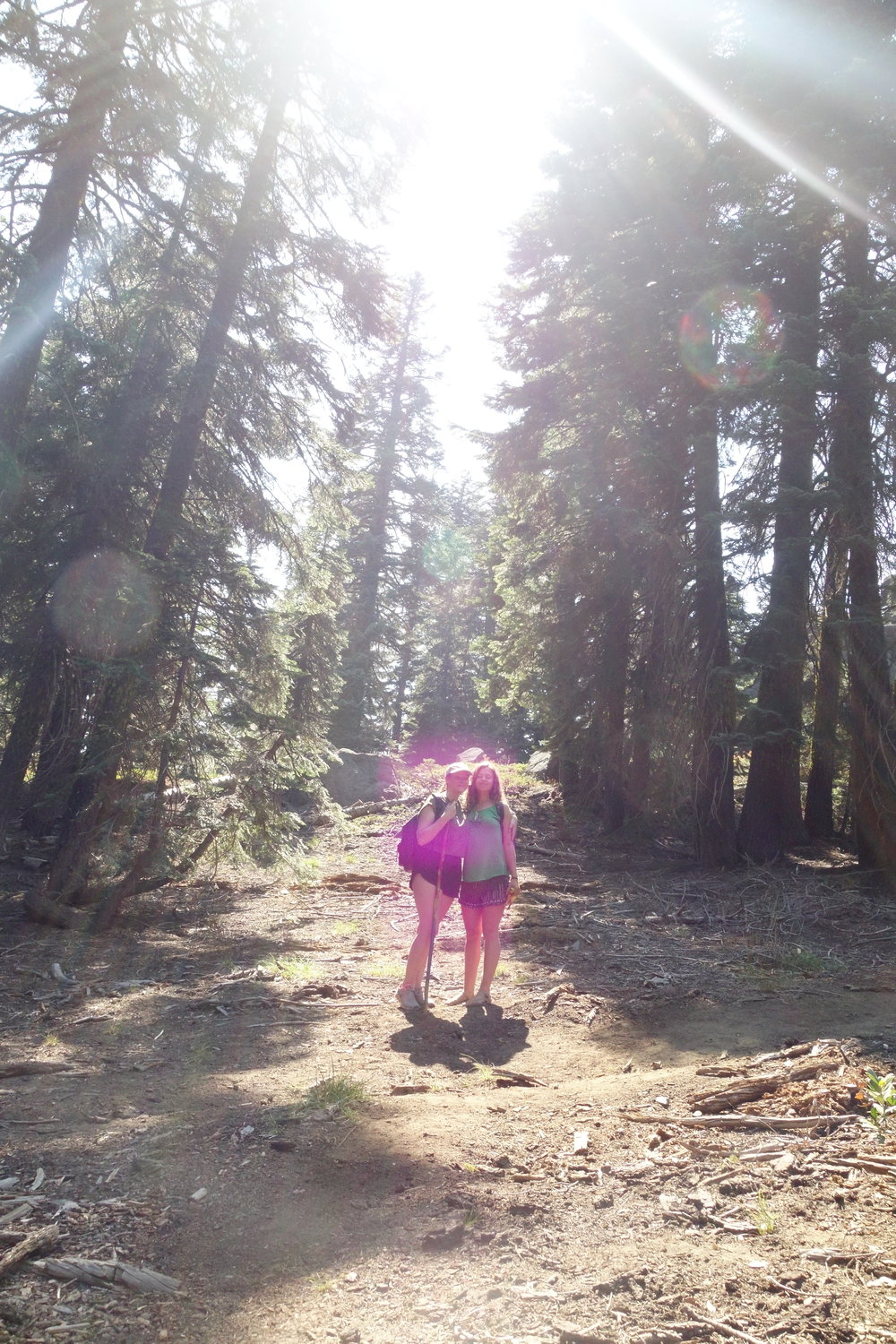 Mt Shasta Spiritual Tours . Mt Shasta Guide  / The Violet Flame