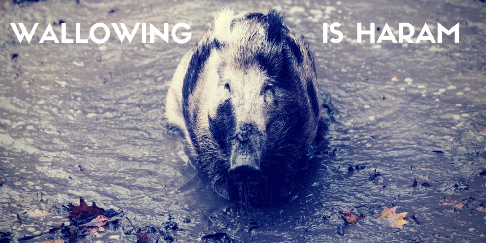 pig wallowing (3).png