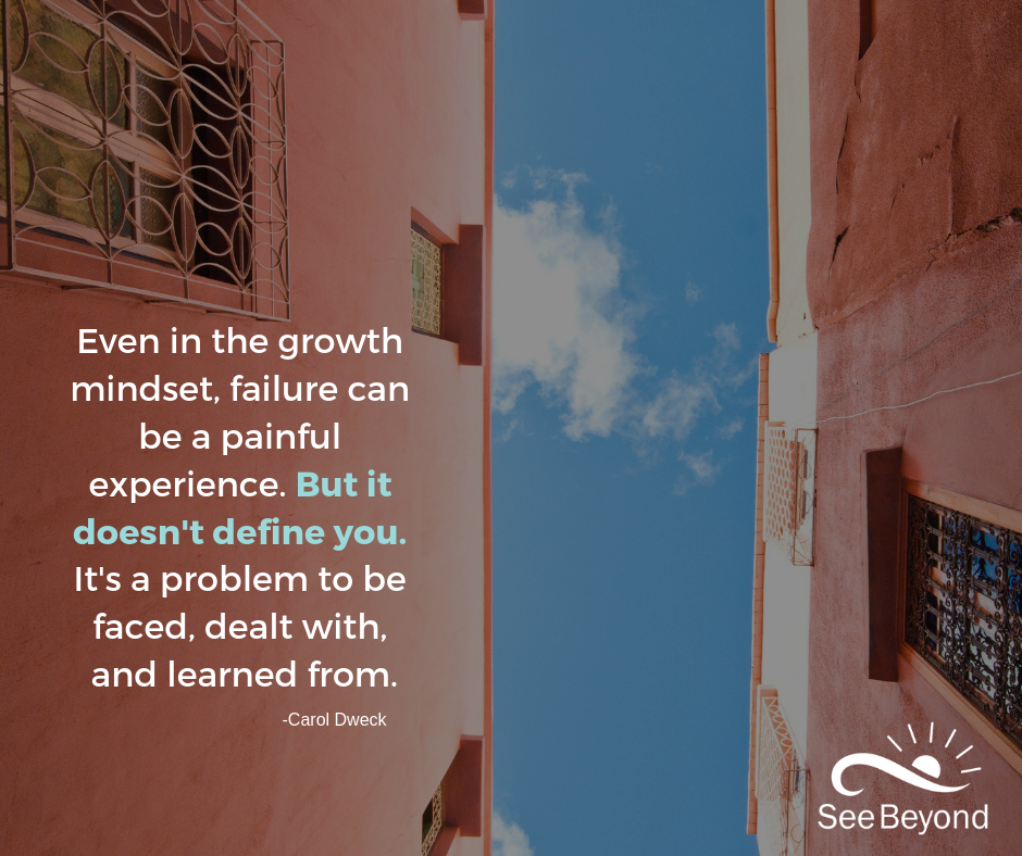Even in the growth mindset, failure can be a painful experience. But it doesn't define you. It's a problem to be faced, dealt with, and learned from..png