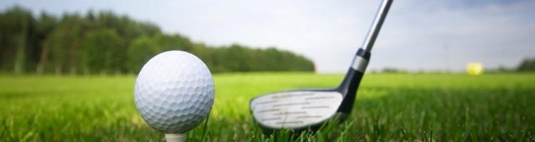 GolfHead.jpg