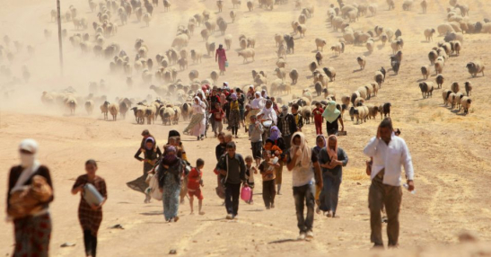 climate_refugees_0.jpg