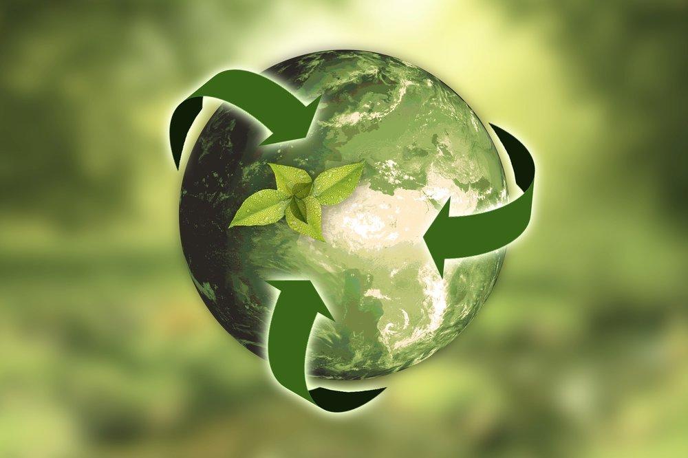 Ecologische Economie -