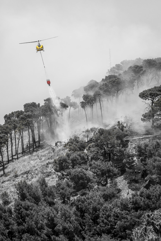 wildfire-cape-town-tyson-jopson-1.jpg