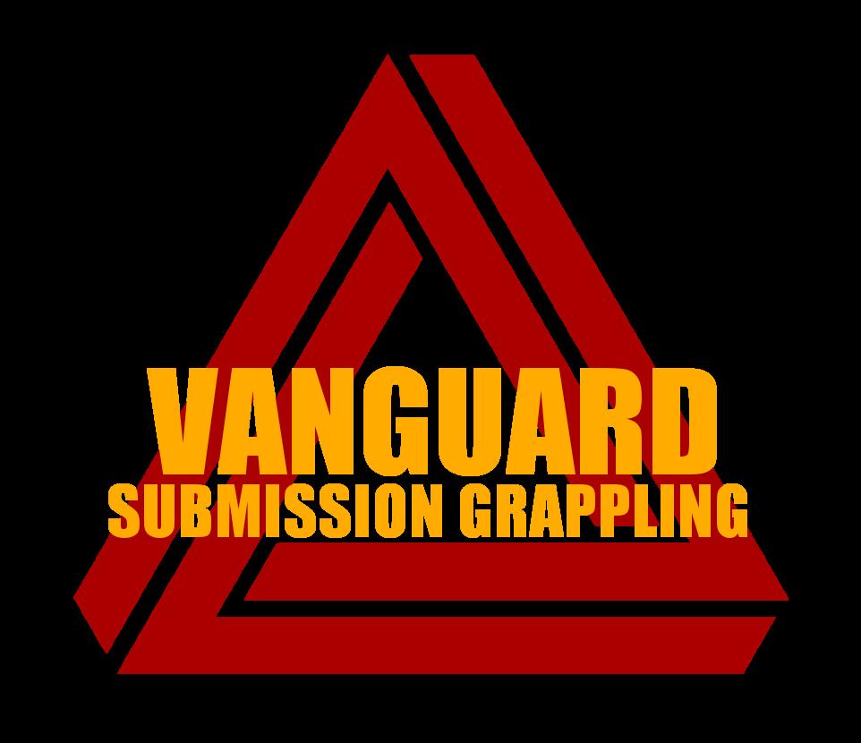 vsg logo 04 (2).png