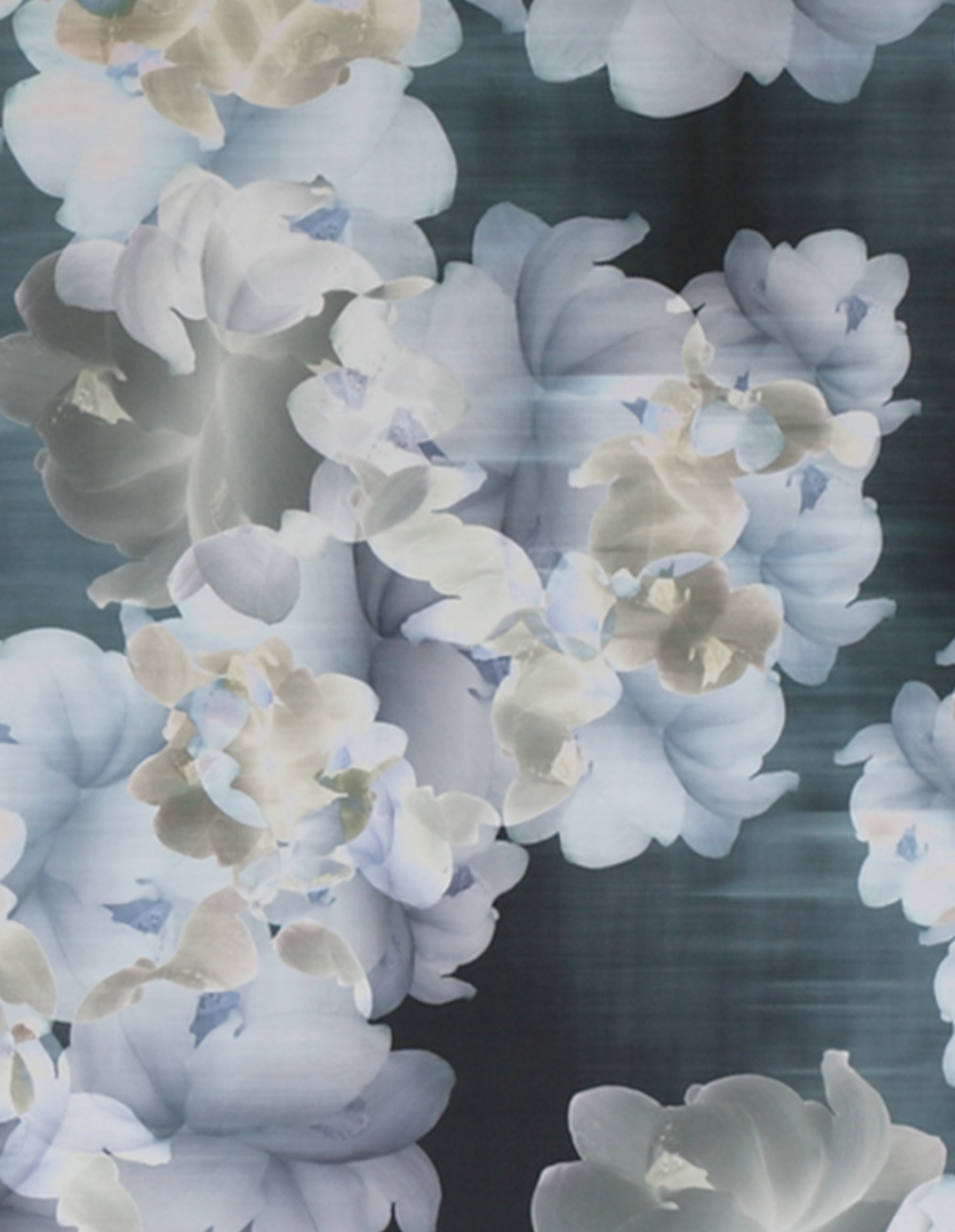 Trove's Alycone. A modern way of making wallpaper. All digitally printed.