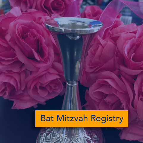 Bat mitzvah registry.jpg