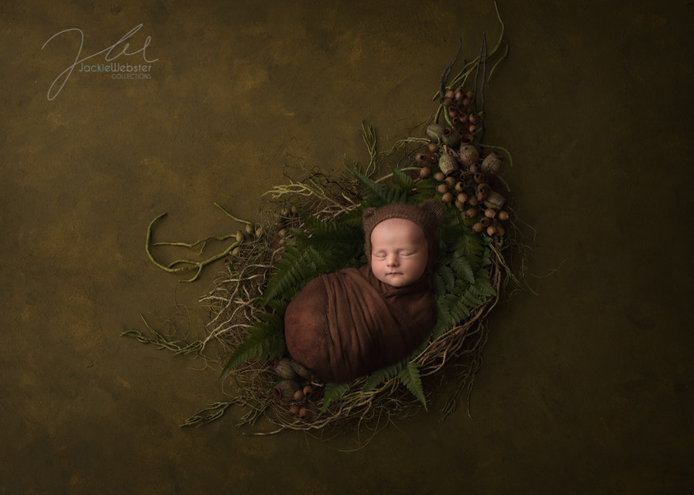 Jackie Webster Collections, Jackie Webster, Weston-super-Mare newborn baby photographer.JPG