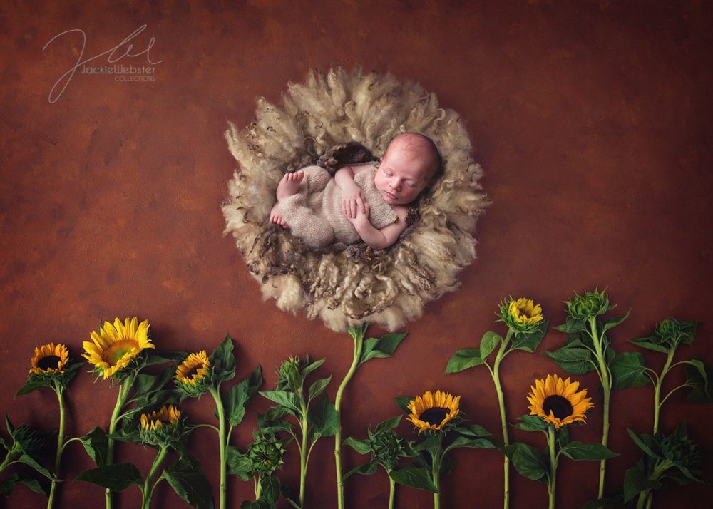 Jackie Webster Collections, Jackie Webster, Weston-super-Mare newborn baby photographer-18.JPG