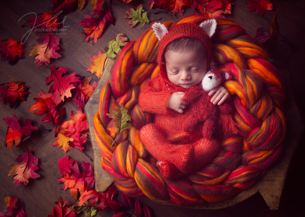Jackie Webster Collections, Jackie Webster, Weston-super-Mare newborn baby photographer-25.JPG