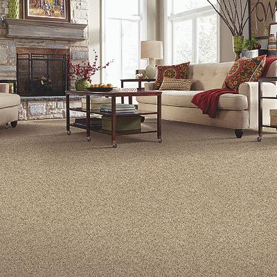 carpet 11.png