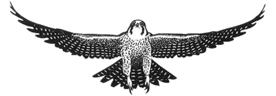 Logo of falcon graphic   Falcon Trading International