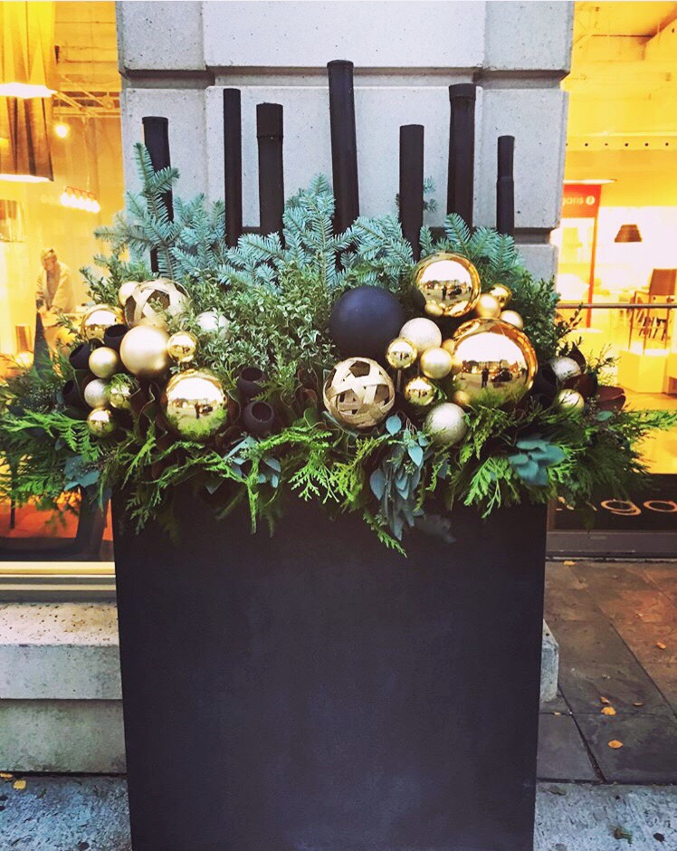 Holiday planters.JPG
