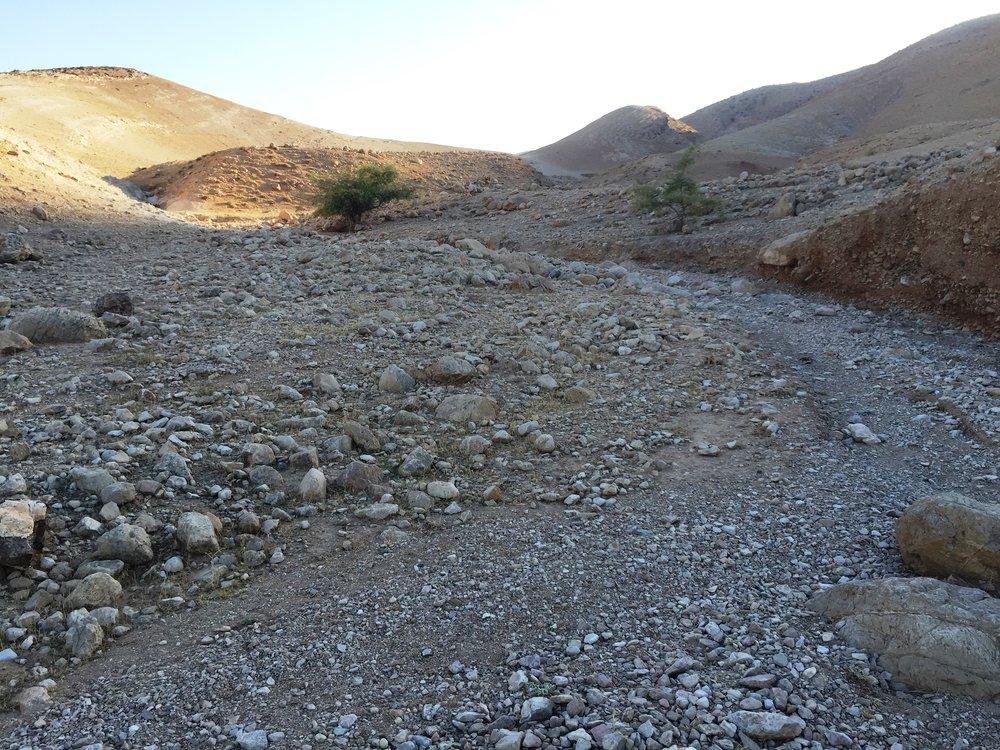 El_Mastarah_nestled_in_fork_of_wadi.JPG