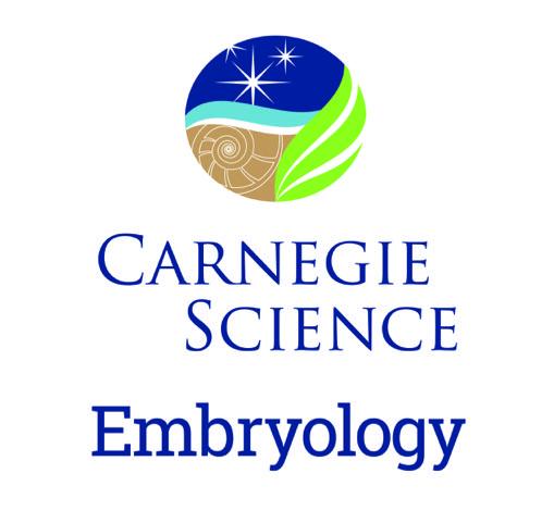 CS_embryo_logo_vert.jpg