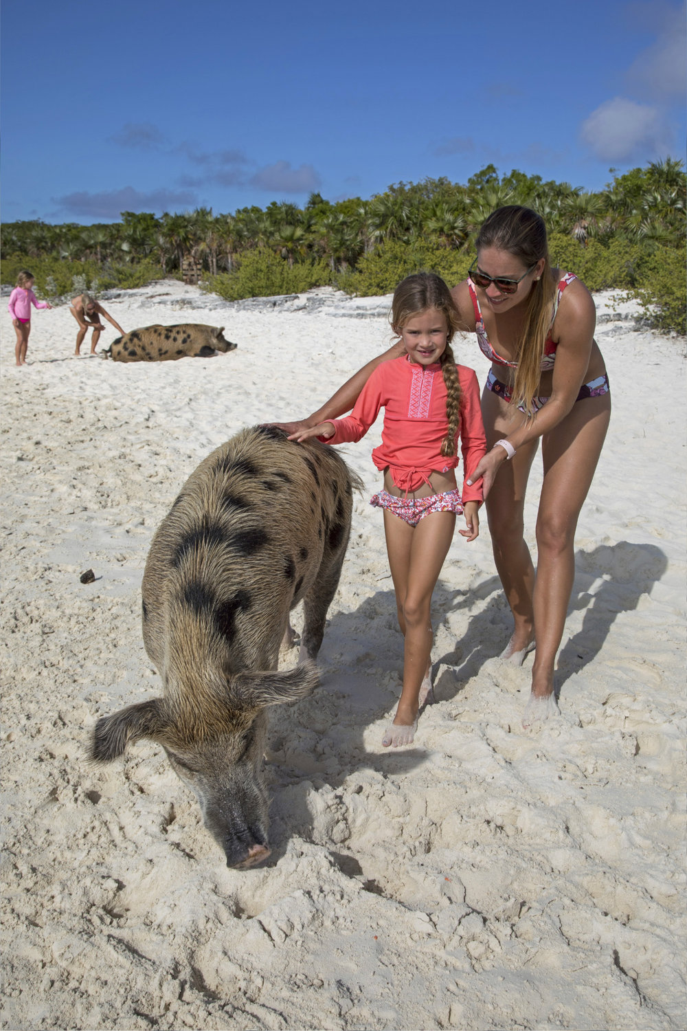 Charter-Sweet-Escape-Exumas-Pigs.jpg