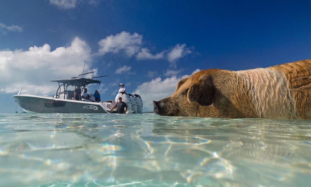 Charter-Exuma-Cays-Bahamas-Photos_2.jpg