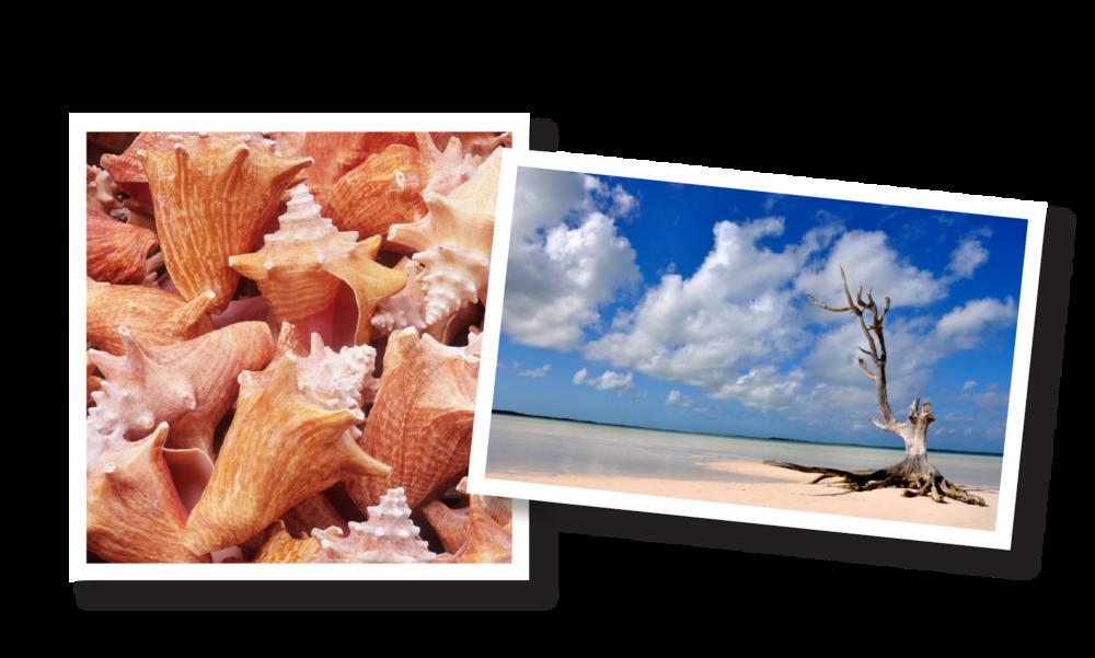 Art-Deco-Details-Sweet-Escape-South-Bahamas.png