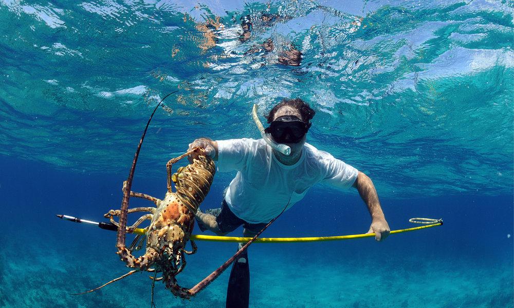 charter-yacht-sweet-escape-southern-bahamas-sponge-dive-coral-cat-island