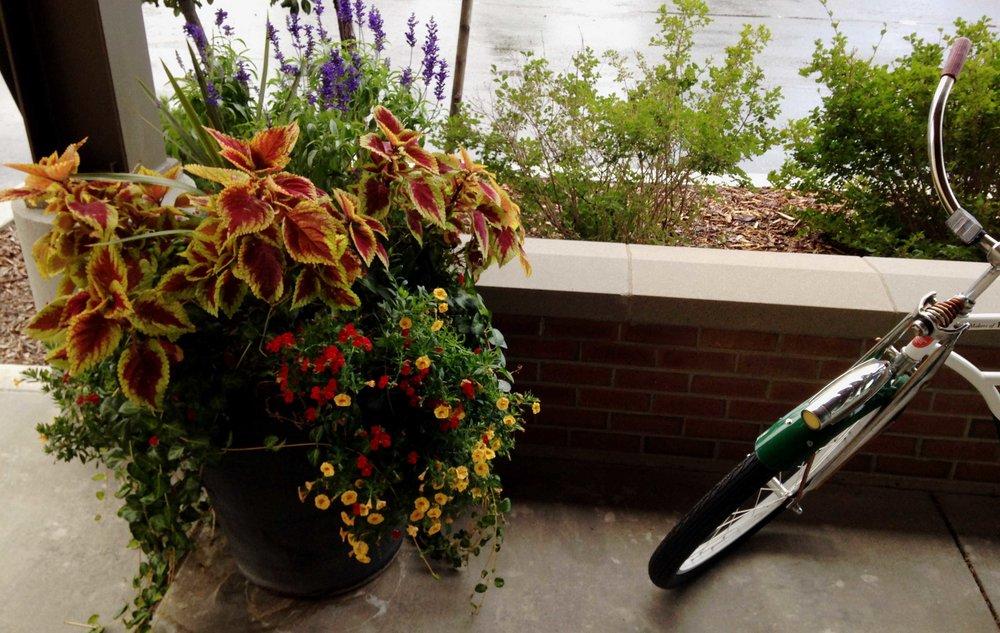 flower-pot-with-bike180.jpg