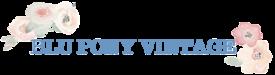 blu pony vintage logo.png
