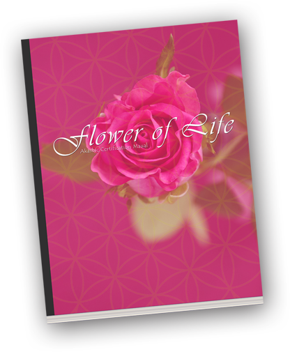 Flower Of Life Training Manual -