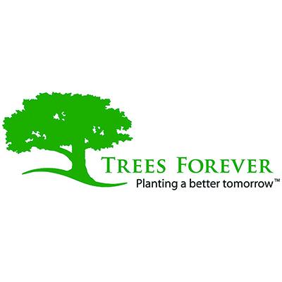 Trees Forever.jpg
