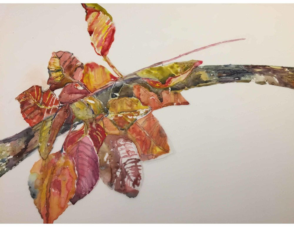 Fall Leaves, SOLD