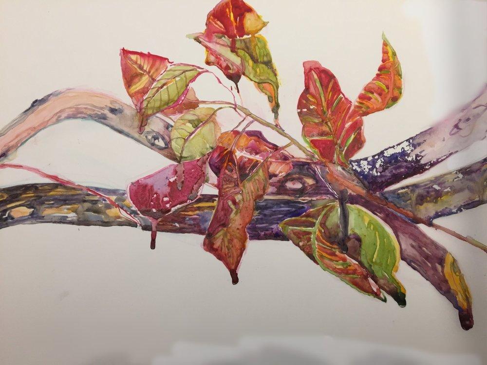 Radiant Leaves, SOLD