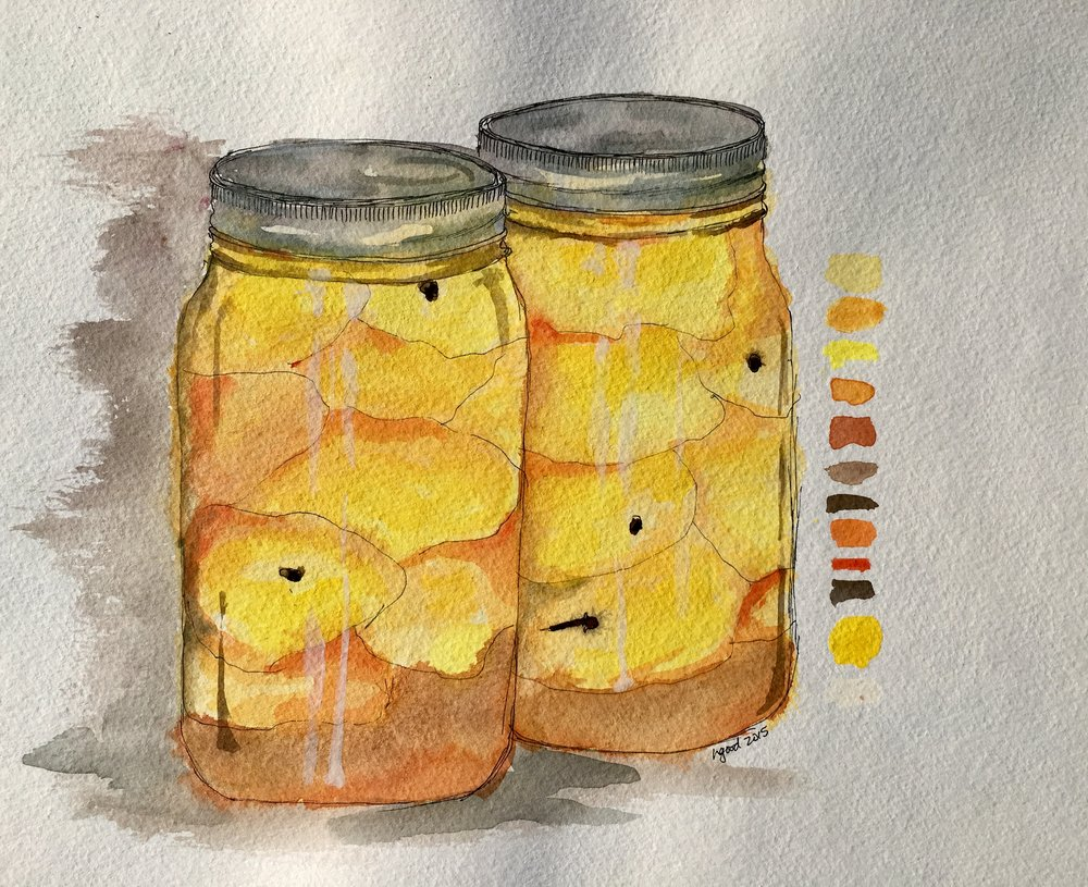 """Canned Peaches watercolour and ink on paper 11x15"""" $60"""