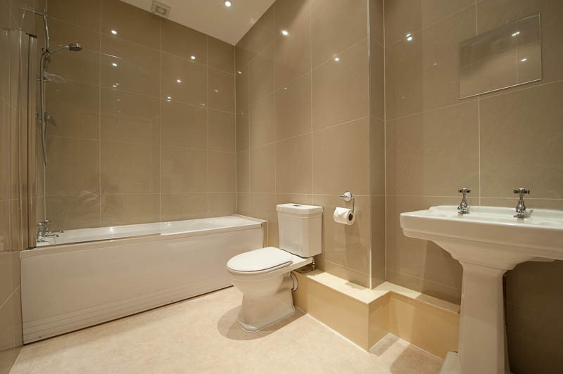 SS Bathroom .jpg